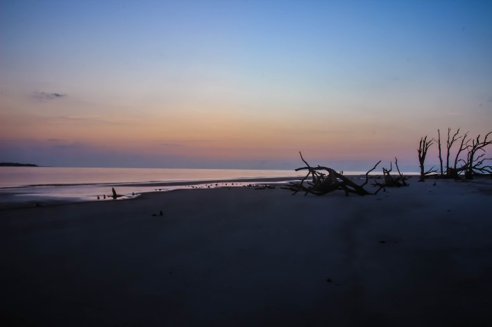 jekyll_island_2-5458