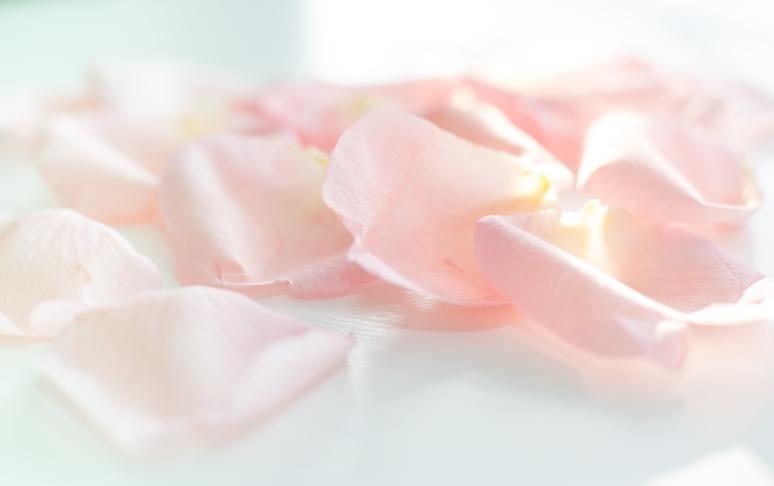 petals-1
