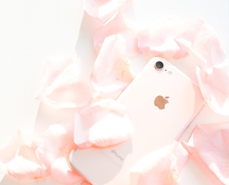 petals-4