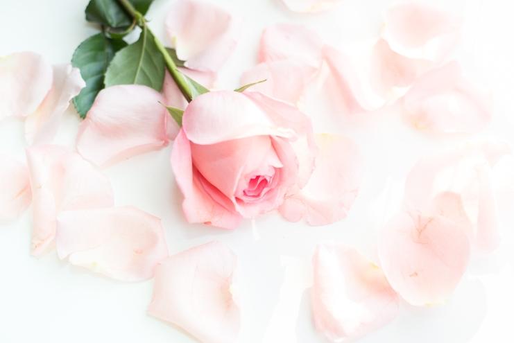 petals-7